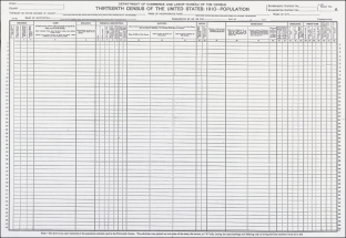 1910 census form