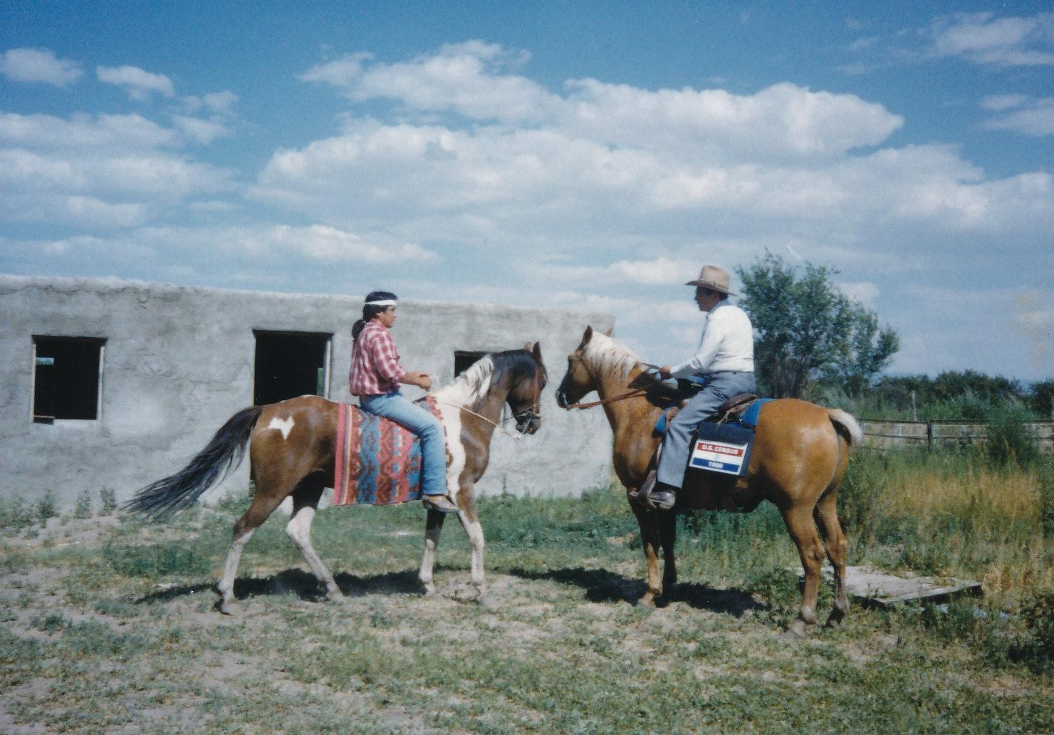 1990 New Mexico Enumeration