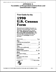 1990 census form